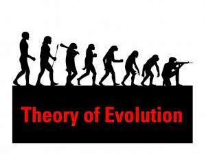 7-theory-of-evolution-marco-piroli-italy-thumb